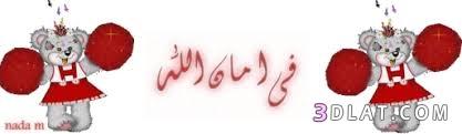 شوربة لعيد الاضحى المبارك. اكلات لعيد do.php?img=1129351