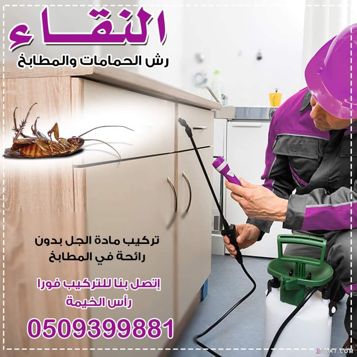 مكافحة الحشرات #رأس_الخيمة do.php?img=1129431