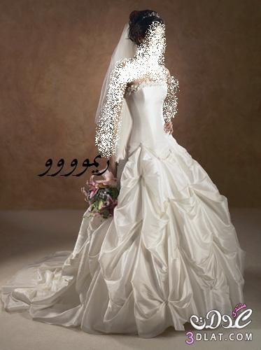 فساتين زواج رائعه 2021 احدث خطوط فساتين الافراح فساتين زفاف فساتين فرح جديده