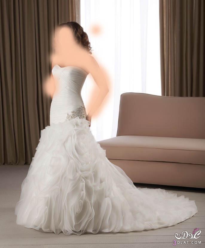 موديلات فساتين زواج 2021 فساتين زفاف فساتين افراح فساتين فرح