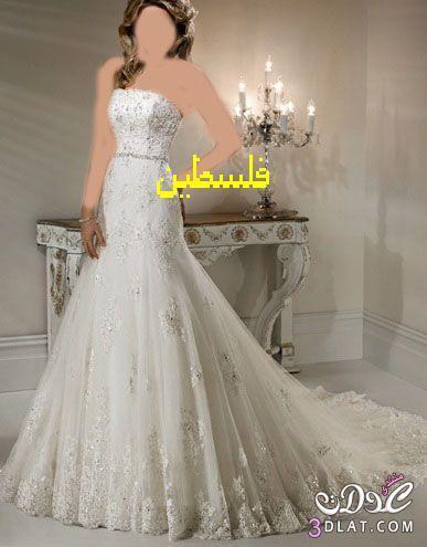 فساتين زفاف انيقة فساتين زفاف في غاية الروعة فساتين عرائس مميزة