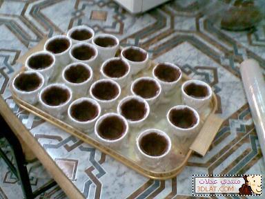 حلى فناجيل القهوة حلى الفناجيل المقلوبه بالصور حلى الفناجيل بالاوريو