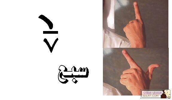 ���� ��� ������ ������� ������ �������