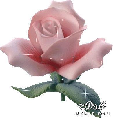 هدايا الام 2019 بالصور افكار لاختيار 129934368515.jpg