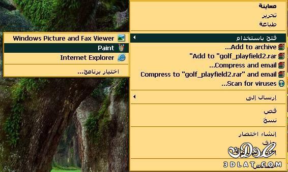 كيفية تصغير الصورة بدون برامج بالصور 12994353164.jpg