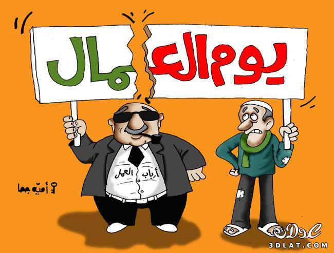 ������ 2011 ������ 2011 2011 13042109642.jpg