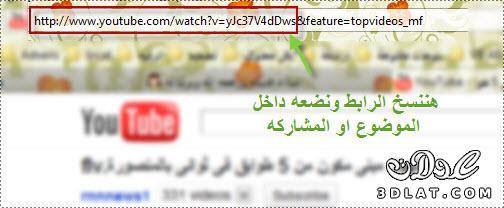 كيفية اضافة فيديو اليوتيوب داخل المنتدى 13091043051.jpg