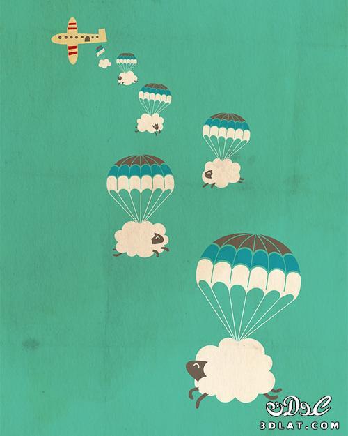 خرفان بمناسبة الاضحى Sheep خروف العيد 131903643011.jpg