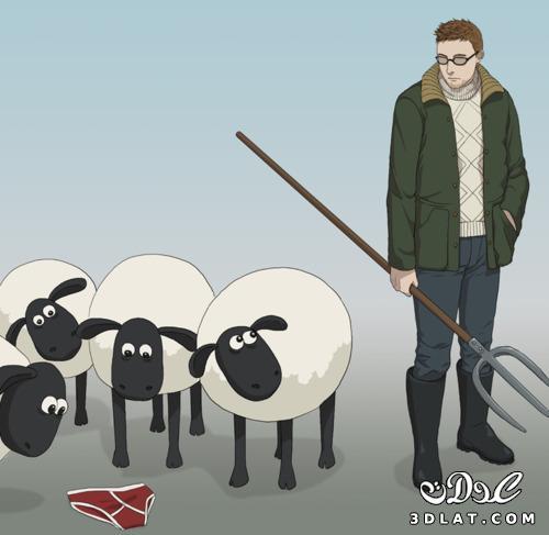 خرفان بمناسبة الاضحى Sheep خروف العيد 131903643020.jpg