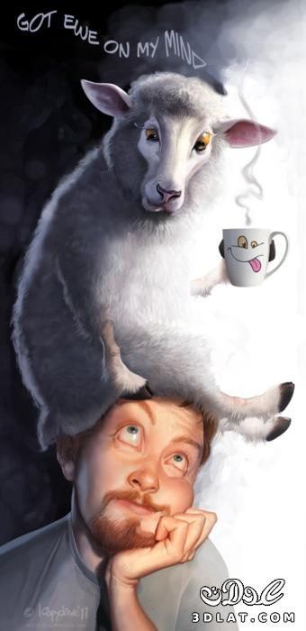 خرفان بمناسبة الاضحى Sheep خروف العيد 13190366453.jpg