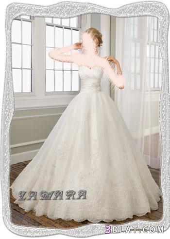 فســــــــــــــاتين زفاف -فساتين الزفاف الجديده