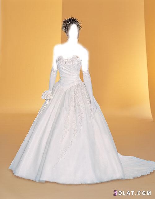 اروع فساتين الزفاف لعروسة2014 فساتين زفاف2014 فساتين رائعة لزفاف العروسة2014 13277347792