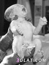 رد: مراحل تطور الجنين داخل بطن أمه بالصور