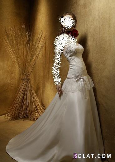 فســـــــــاتين زفاف جديدة -فـسـاتين  زفاف -الجزء 2