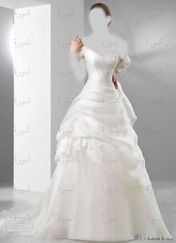 تشكيلة مني فساتيين زفاف 2021تعالوا ماتندموا