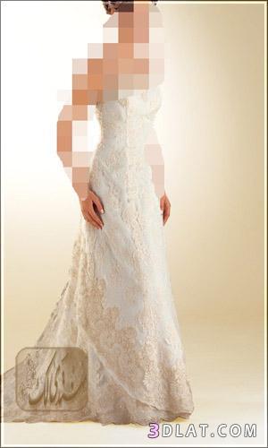 عروس 2021 عرائس الجزائر غير