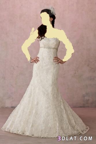فساتين خطوبة 2021  رائعة من diamantes للعرائس الجزائر ج 1