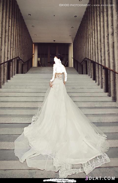 فساتين زفاف - فساتين اعراس - فساتين فرح