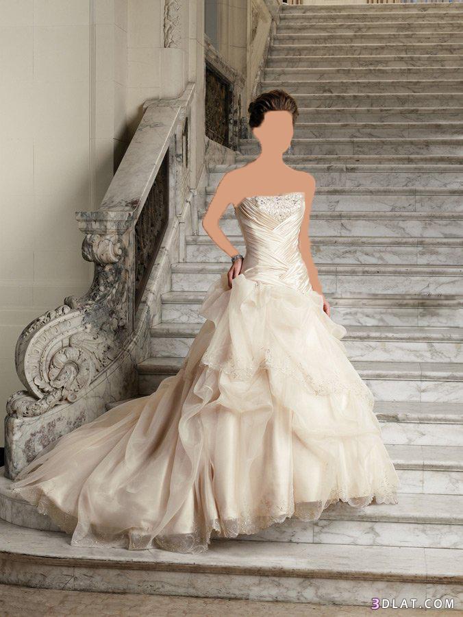 فساتين زفاف - new arrival 2021