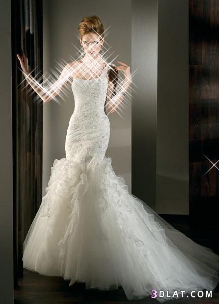 اروع فساتين الزفاف لعروسة2014 فساتين زفاف2014 فساتين رائعة لزفاف العروسة2014 13317262052