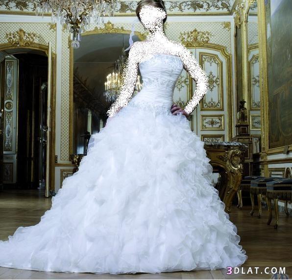 فساتين فرح - فساتين عرس - فساتين زفاف