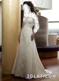 فساتين زفاف منتهى الشياكه