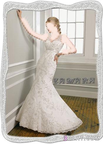 أجمل الفساتين لأحلى عروسة :1:
