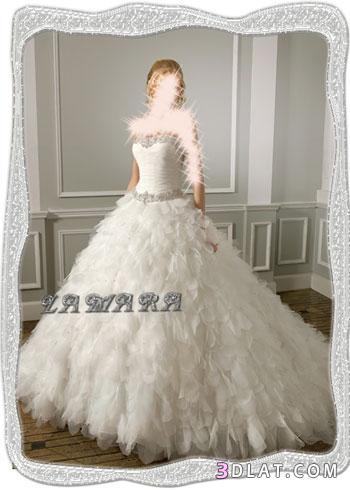 أجمل الفساتين لأحلى عروسة :2: