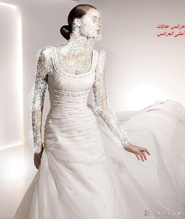 عروس 2021 عرائس الجزائر أحلى العروس 2021