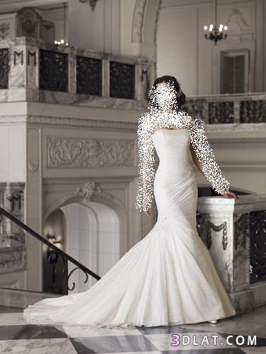 فساتين زفاف 2012اخر جمال