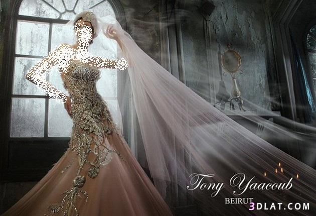 فساتين زفاف 2021 طونى يعقوب