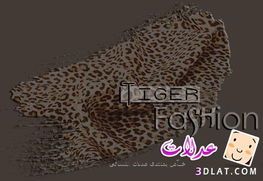 فساتين Tiger 2019- ازياء تايجر الجديد 13407665871.png