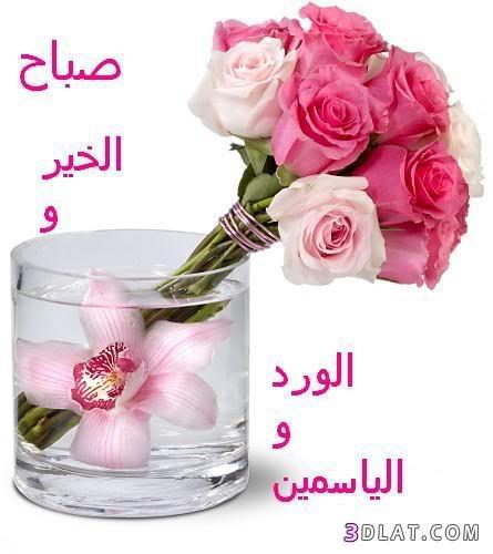 صباح ومساء الخير تجميعى 134175496514.jpg