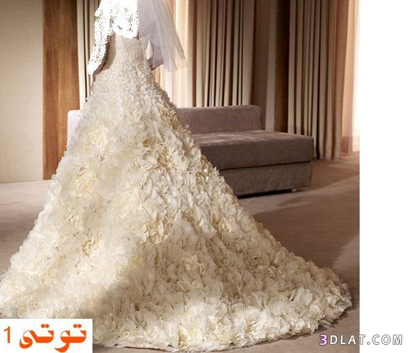 فساتيتن زفاف - فساتين زفاف 2021  لأحلى عروسة من الدانتيل