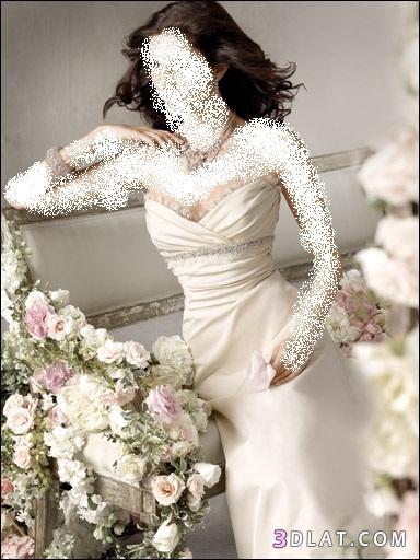 فساتين زفاف 2021  جديدة - فساتين زواج انيقه