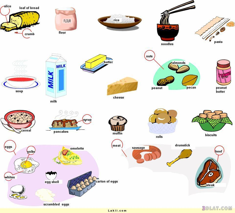 مواد غذائية بالانجليزى صفحة