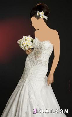 فساتين زفاف 2021  فساتين زفاف 2021  بسيطه فساتين زفاف 2021  بتصاميم بسيطه