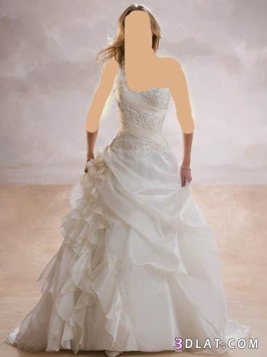 فساتين فرح-فساتين افراح-فساتين زفاف-فساتين عرائس