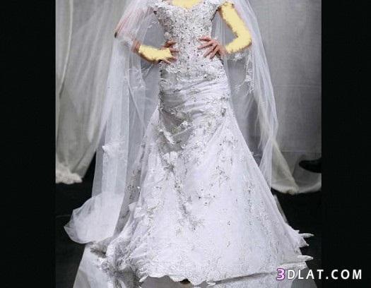 فساتين زفاف فساتين افراح فساتين عروس دبى
