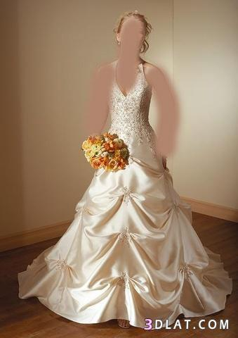 تشكيلة فساتين زفاف 2021  فساتين افراح فساتين للعروس 2021