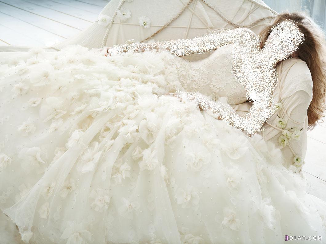 اجمل ثلاثه فساتين زفاف 2021  على الاطلاق