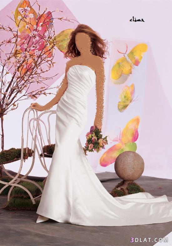 فساتين بسيطة و ناعمة للعروس 2021 ، فساتين عرائس فخمه 2021