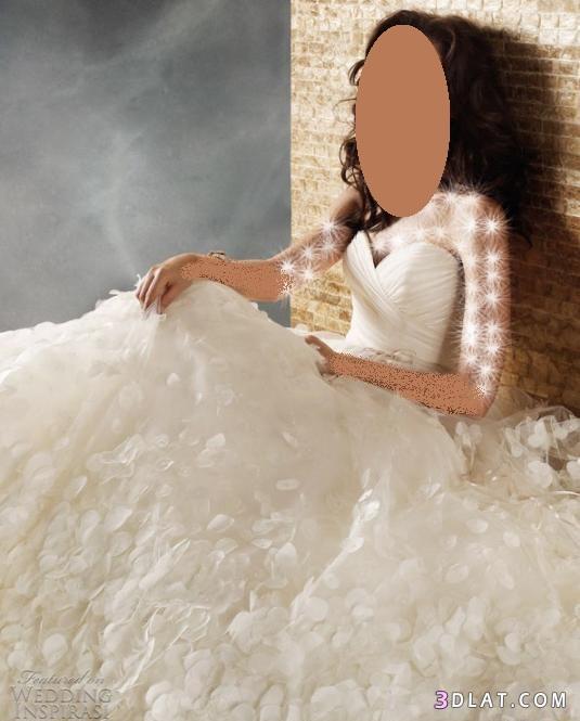 فساتين زفاف - فساتين افراح - فساتين للعروس