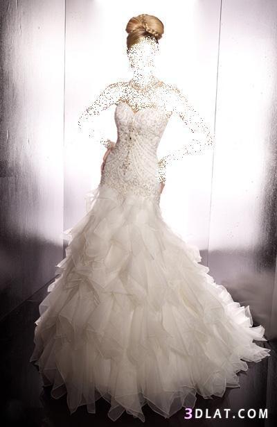 فساتين زفاف 2021  جميييييييييله جدا