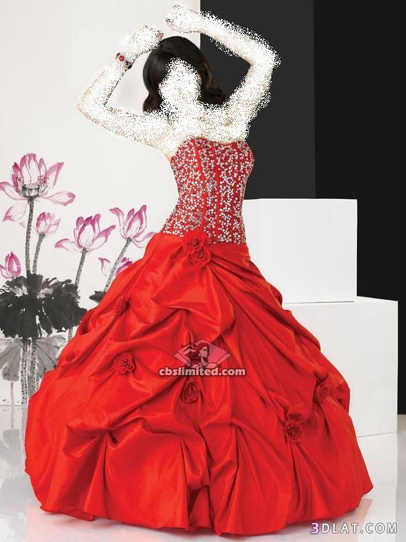 اجمل فساتين زواج 2021  من بائعه الورد لعرائس الجزائر وبس