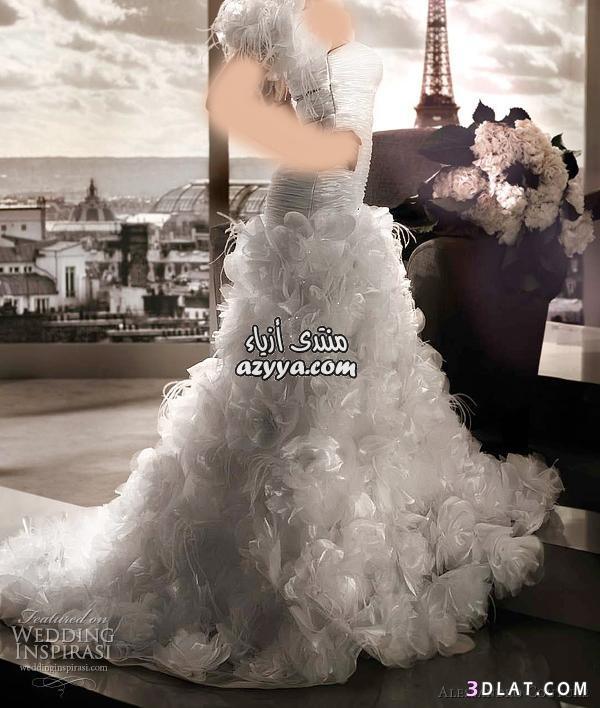 مجموعة من فساتين الزفاف