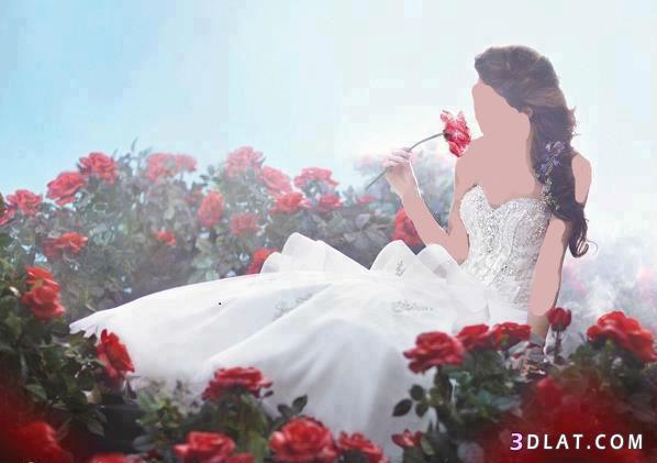 فساتين زفاف 2021  حلوه