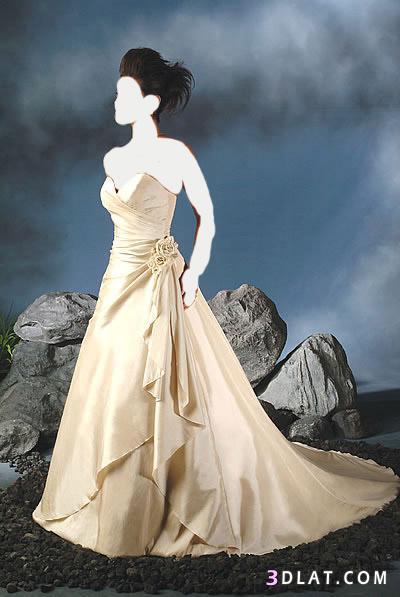 فساتين زفاف للعرائس - فساتين افراح - فساتين عروس