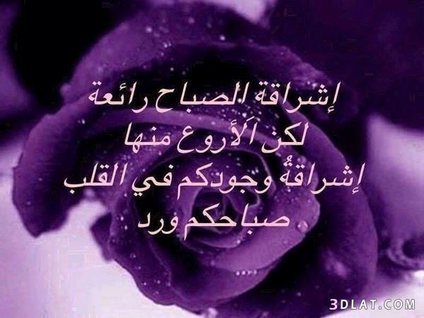 صباح الخير 2019 مساء الخير 2019 13491826157.jpg