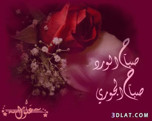 صباح الخير 2019 مساء الخير 2019 13491912681.jpg